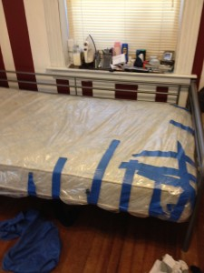 Bed bug mattress cover?